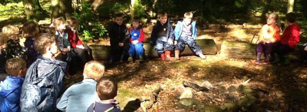 Class 2 Forest School Week 1