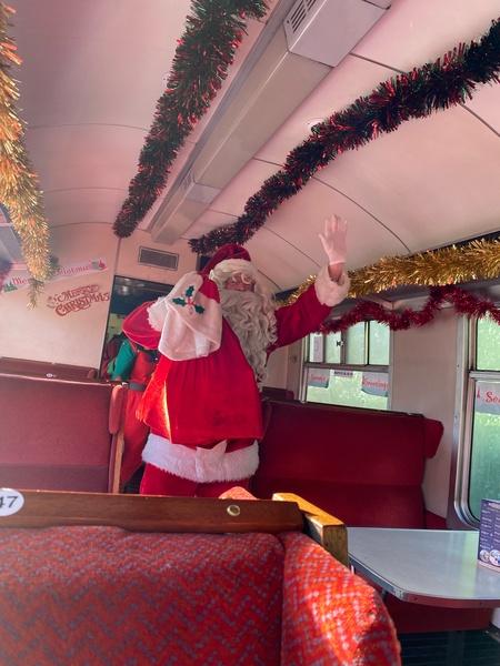 Puffins Santa Train